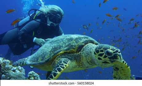 Scuba diver woman with sea turtle