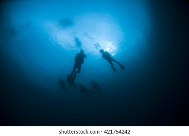 Scuba Divers from below in the blue Water with sun in the background.