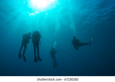 Scuba divers doing a safety stop on a down line before ascending to the surface.