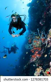 Scuba Divers explores coral reef.