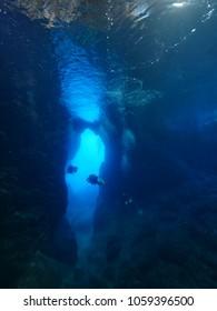 scuba divers exploring cave underwater