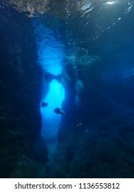 scuba divers exploring caves underwater scenery
