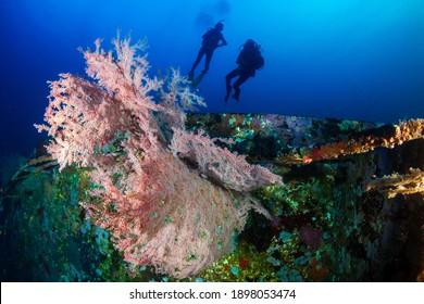 SCUBA Divers exploring a deep, underwater shipwreck.