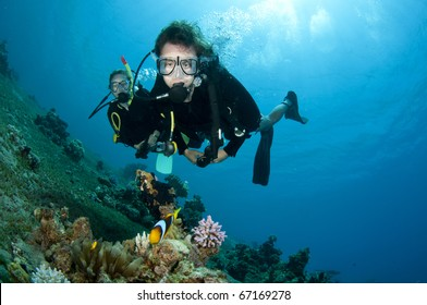 scuba divers look at tropical fish underwater in clear blue water