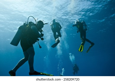 Scuba divers on the blue background