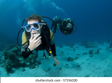 scuba divers on a dive