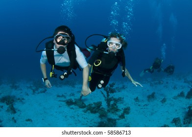 Scuba divers in the red sea