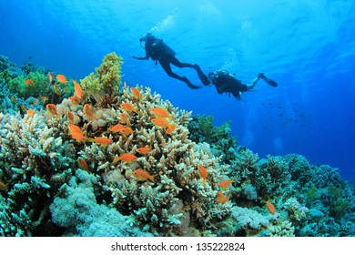 Scuba Divers underwater exploring coral reef in ocean
