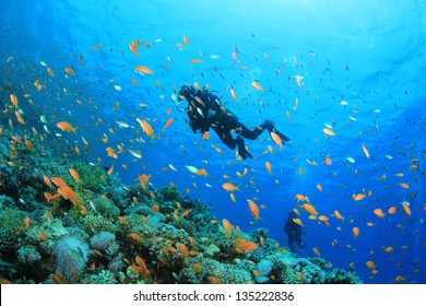 Scuba Divers underwater exploring coral reef in ocean