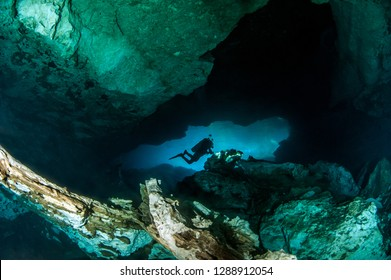 Scuba diving at the Cenote Jardin del Eden in Mexico
