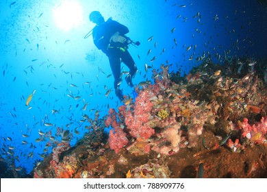 Scuba diving coral reef underwater