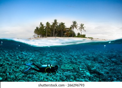 scuba diving diver below coconut island  bali lombok sulawesi indonesia underwater bali lombok