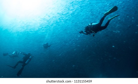 scuba diving - divers and fishes - explore marine underwater world