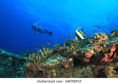 Scuba diving, fish and coral reef underwater
