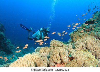 Scuba Diving on coral reef with tropical fish