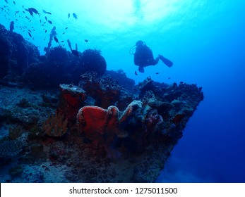 Scuba diving in Rabaul , Kokopo on Atun Wreck located next to Little Pigeon Island . East New Britain , Papau New Guinea scuba diving .