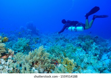 Scuba Diving the Red Sea Egypt