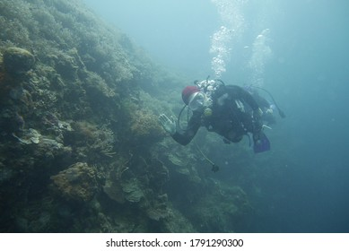 scubadivers in Philippines bohol for open water