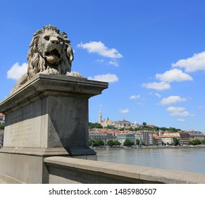 Sculpture of a lion on the Secheni Chain Bridge in Budapest, Hungary