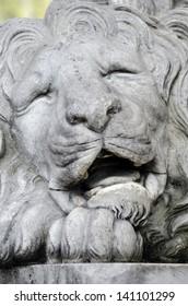 Sculpture of a lion's head in Lvov, Ukraine