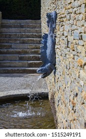 A sculpture of a newt hung onto a stone wall as a water feature, water coming out of its mouth