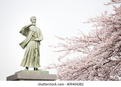 Sculpture and sakura close to in Sensoji Temple, Asakusa, Tokyo
