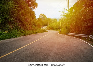 S-Curve Raod way in the forest for road trip with sun light background