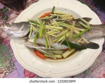 Sea bass with Cymbopogon