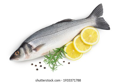 Sea bass fich isolated on white background with clipping path and full depth of field. Top view. Flat lay