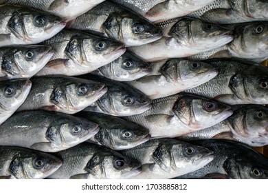 Seebarsch wird verkauft