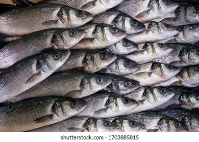 sea bass fishes are on sale
