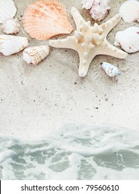 Sea Beach with Shells Washed by Serf Border