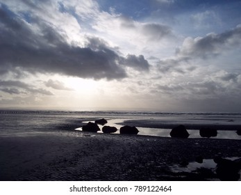 Sea Beauty, Beach at Brean Down, Somerset