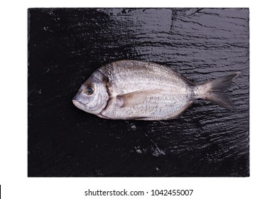 Sea bream or dorado sea fish on dark slate board isolated on a white background