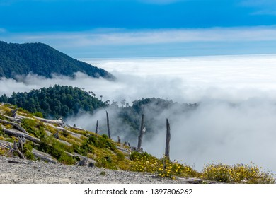 Sea of clouds in the mountains