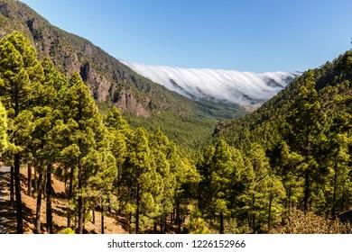 Sea of Clouds over Caldera de Taburiente in La Palma, Canary Islands