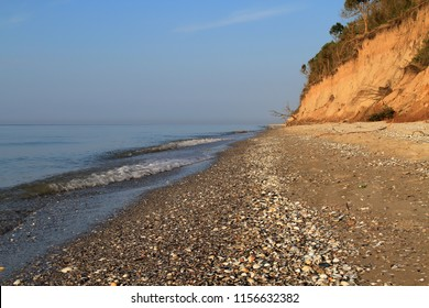 Sea coast sandy beach strewn with seashells and clay high bank of the cliff. The roots of plants strengthen the soil