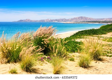 Sea of Cortez and beach in Los Cabos, Mexico