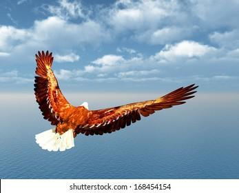 Sea Eagle Computer generated 3D illustration