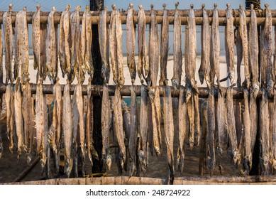 Delicious Fish Paturi Dish Wrapped Banana Stock Photo (Edit Now
