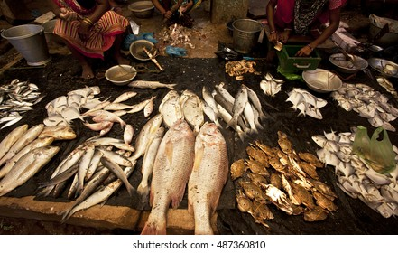 Sea fishes selling in a local market in India