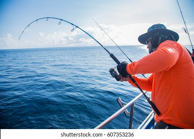 Sea Fishing With Spinning