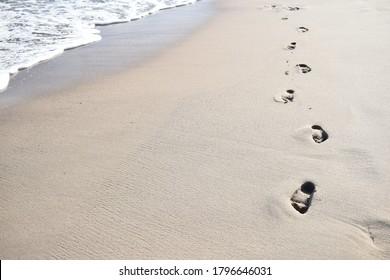 sea beach footprints shore water