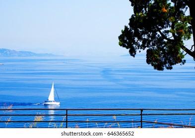 Sea Freedom
