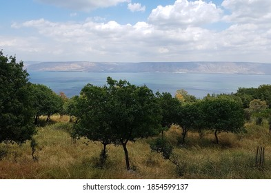 Sea of Galilee and the Golan Heights at Summer, North Israel