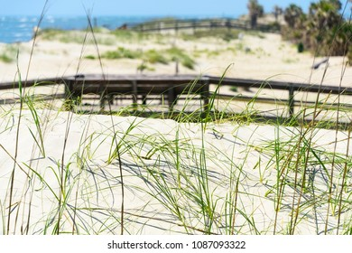 Sea grass poking through sand with wooden pathways to the beach and surf in background