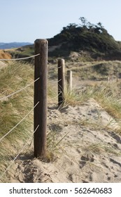 Sea Grass and Sand Along Beach Fence in Pacific City, Oregon