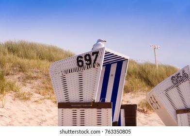 Sea gull sitting on a beach chair on the island of Sylt, Germany