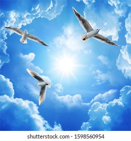 Sea gulls flying in the blue sunny sky over the coast of Baltic Sea