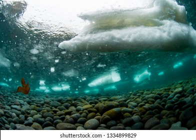 Sea Ice in the shoal